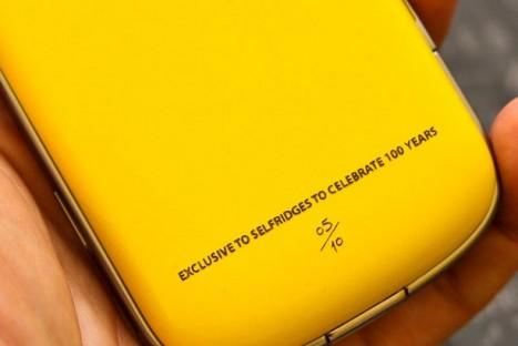 yellow-blackberry-bold-467x312